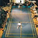 Image for Badminton