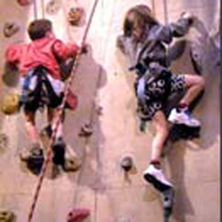 Image for Climbing wall panel