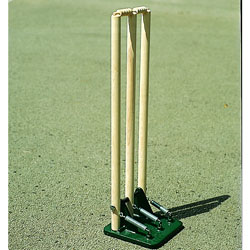 Image for Sprung stumps Wood