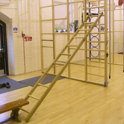 Image for Wood PE ladders  10' long