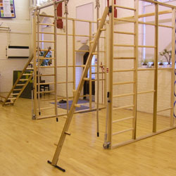 Image for PE Peg ladders Complete